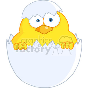 4746-Royalty-Free-RF-Copyright-Safe-Surprise-Yellow-Chick-Peeking-Out-Of-An-Egg-Shell clipart. Royalty-free image # 384471