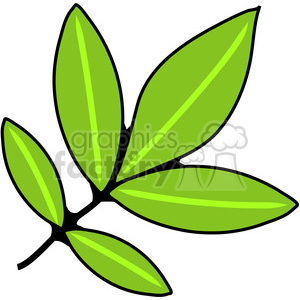 Shagbar Hickory Leaf in color clipart. Royalty-free image # 387410