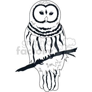 Owl Barred clipart. Commercial use image # 391535