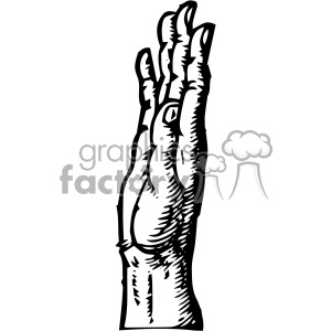William Cheselden vector right hand anatomy art clipart. Royalty-free image # 403125