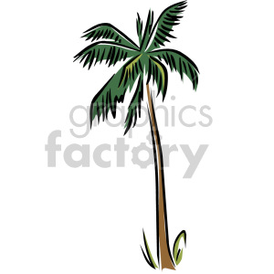 palm tree clipart. Royalty-free image # 151183