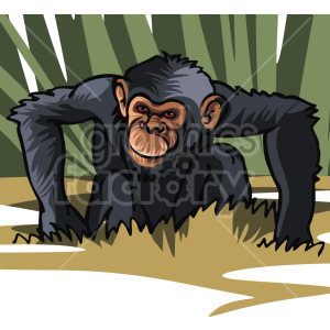 chimpanzee clipart. Royalty-free image # 129346