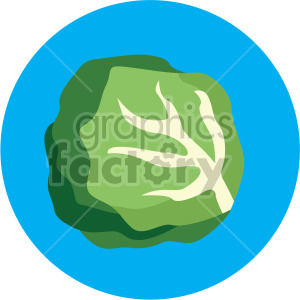 lettuce on blue circle background