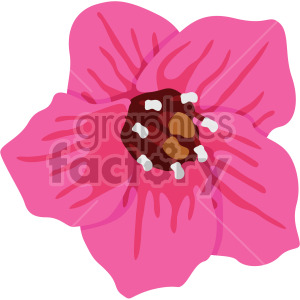 Bergenia flower clipart. Commercial use icon # 408050