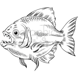black white realistic piranha vector clipart