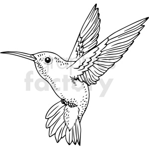 black and white hummingbird vector clipart clipart. Commercial use image # 411466