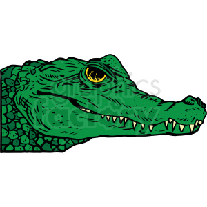 realistic alligator vector clipart clipart. Royalty-free image # 413193