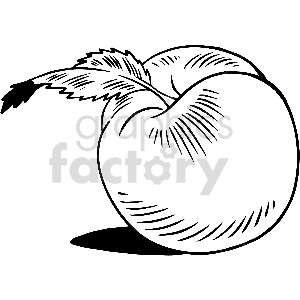 black and white peach vector clipart clipart. Royalty-free image # 413313