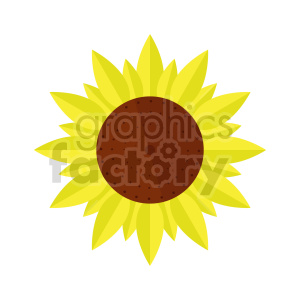 sunflower clipart clipart. Commercial use image # 415763