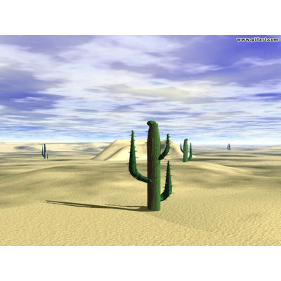 wallpaper desktop images desert sand cactus hot  Wallpaper