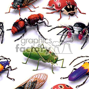 background backgrounds tile tiled seamless stationary email web page bug bugs insect insects wasp wasps spider spiders ladybug ladybugs white cricket crickets