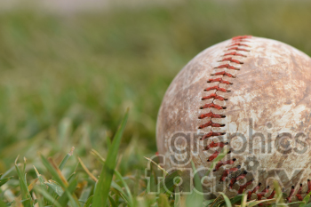 dirty baseball photo. Royalty-free photo # 391034