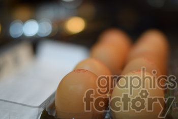 eggs photo. Royalty-free photo # 391139