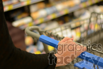 pushing shopping cart in store clipart. Commercial use image # 391309