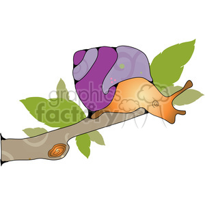 snail branch animal cartoon snails
