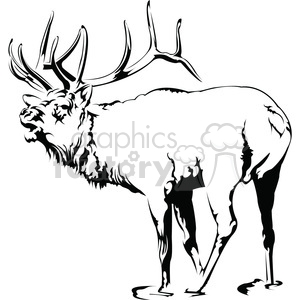 black and white Elk roaring clipart. Commercial use image # 394991