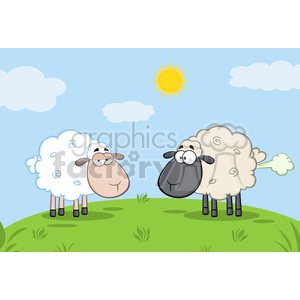 Royalty Free RF Clipart Illustration White Sheep And Farting Black Head Sheep On A Meadow clipart. Royalty-free image # 395710