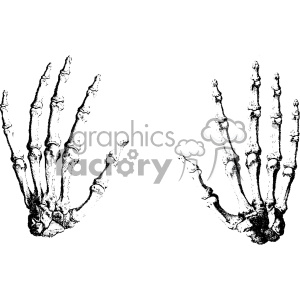 William Cheselden vector hand anatomy art clipart. Royalty-free image # 403124
