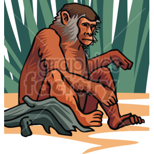 monkey clipart. Royalty-free image # 129324