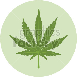 marijuana leaf on green circle background