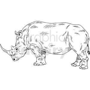 black and white rhinoceros vector clipart clipart. Royalty-free image # 411471