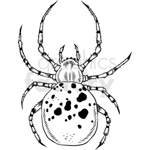 black white spider vector clipart clipart. Royalty-free image # 412655