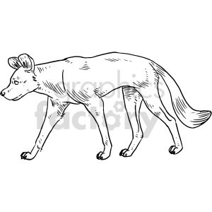 wild dog black and white clipart