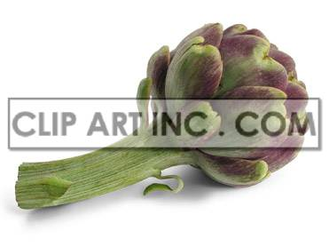Artichoke animation. Royalty-free animation # 176932