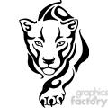 wild puma 022