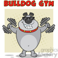 Smiling Gray Bulldog Cartoon Mascot Character With Sunglasses Working Out With Dumbbells Vector Illustration With Background And Text Bulldog Gym Isolated On White