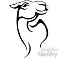 wild camel 075