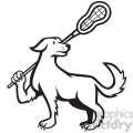 black and white dog lacrosse stick