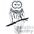 Owl Barred