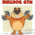 Smiling Brown Bulldog Cartoon Mascot Character With Sunglasses Working Out With Dumbbells Vector Illustration With Background And Text Bulldog Gym Isolated On White