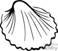black outline of a sea shell