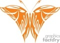 butterfly design in orange