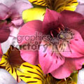 background backgrounds tile tiled seamless stationary email web page flower flowers jpg nature real