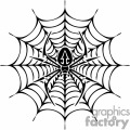 large web with spider gif, png, jpg, eps