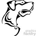 wild dog 033