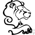 wild lion 089