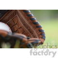 baseball glove in grass left  jpg