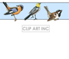 backgrounds background tiled tiles birds bird nature   012 backgrounds tiled  gif