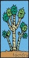 joshua tree gif, jpg, eps
