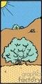 cactus006_PRc