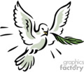 White dove flying with a branch in its mouth 3