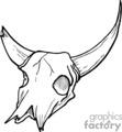 black and white skull bone