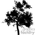leafy tree silhouette