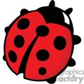 red ladybug with 7 black spots and 6 legs