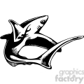 shark design
