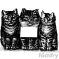vintage cats vector vintage 1900 vector art GF